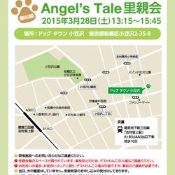 第69回 Angel's Tale 里親会