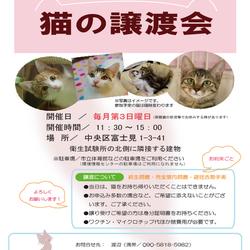 ☆★☆猫の譲渡会 於:相模原市☆★☆