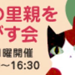 猫の里親をさがす会in亀有 (こち亀両さんの亀有です^^)