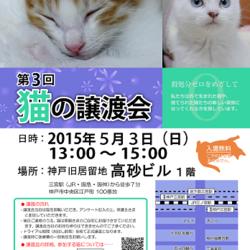 第3回 猫の譲渡会 in 神戸