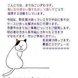 まちねこのおはなし~野良猫お悩み相談室~
