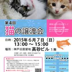第4回 猫の譲渡会 in 神戸