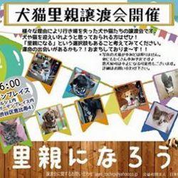 6月7日恵比寿ガーデンプレイスにて譲渡会!