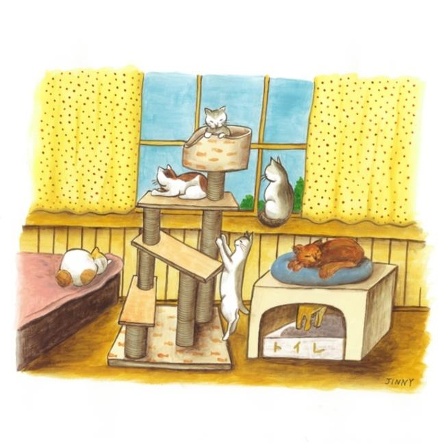 猫糸舎 TAMAのカバー写真
