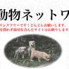 広島動物ネットワーク