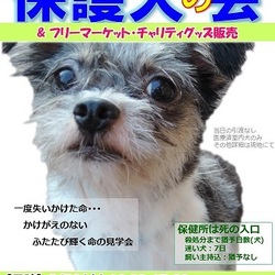 保護犬の会@富士山