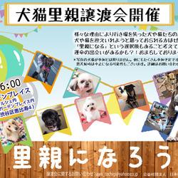 9月6日恵比寿で譲渡会開催!!