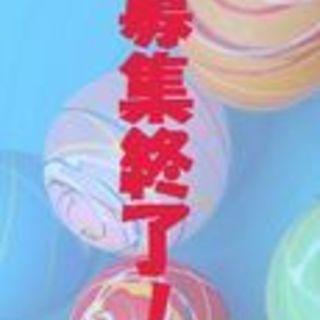 ヨークシャテリア♂ショウ 推定6~7歳