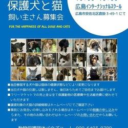 保護犬と猫飼い主さん募集会