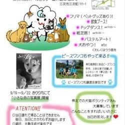 三次市&STEP☆犬猫譲渡会