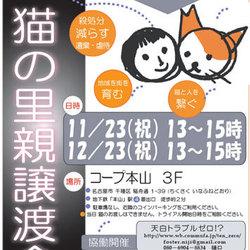 第11会 「猫の里親譲渡会」 協働開催
