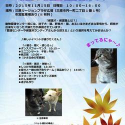 保護犬・保護猫を迎えよう! 三原