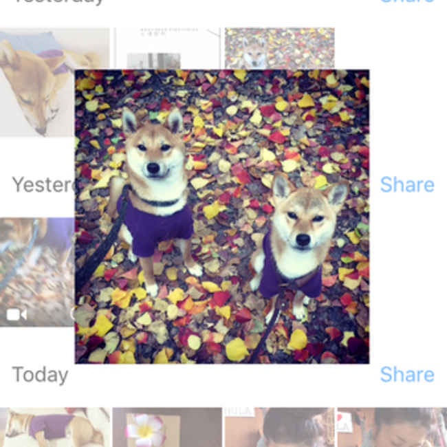 aco_naniのカバー写真