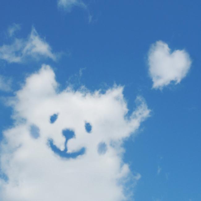 NPO法人 日本動物愛護福祉協会 高崎アニマルランドのカバー写真