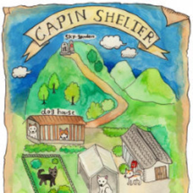CAPINのカバー写真