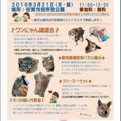 佐賀市☆動物との共生啓発イベント