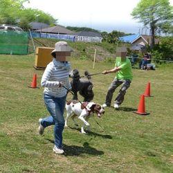 第二回犬と一緒にチャリティ運動会