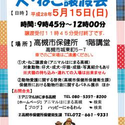 アニマルはにまる高槻 犬猫譲渡会 5/15
