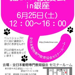 銀座会場!6月25日(土)『ねこざんまい譲渡会』沢山の子猫ちゃんたちが新しい家族を待っています♪