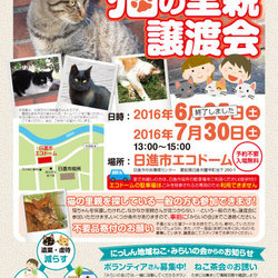 猫の里親 譲渡会(日進市)