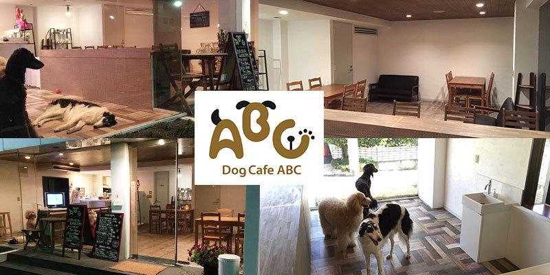 DOG CAFE ABC サムネイル1