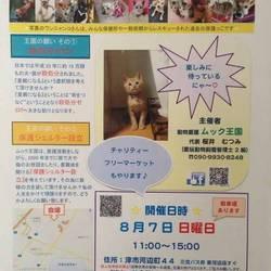 室内☆犬猫譲渡会in津市