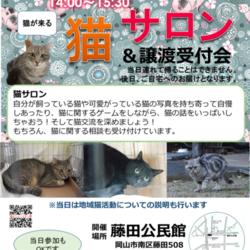 猫サロン&譲渡受付会