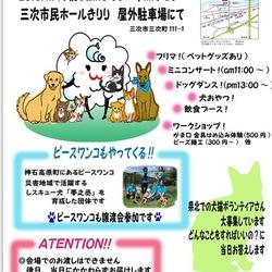 STEP☆犬猫譲渡会