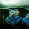 国産グッピー ブルーグラス 成魚2ペア サムネイル2