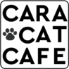Cara Cat Cafe(保護活動者)