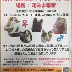 第1回 みるくの会 【猫の里親会】