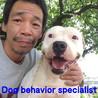 動物愛護団体Dog Rescue A&R 紋義のブログ