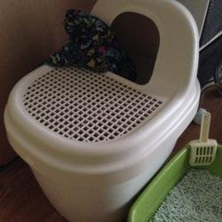 ドーム型トイレに入ってくれない