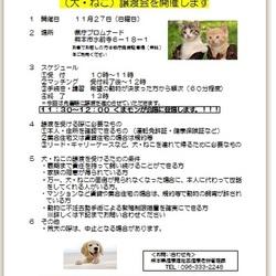 保護動物譲渡会(くまモンが会場に登場します!!!)