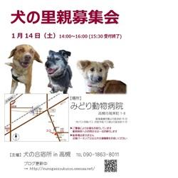「犬の合宿所in高槻」の里親募集会 サムネイル1