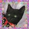 好奇心いっぱいで元気な黒猫の男の子♪♪