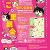 ★動画あり★キリット美人三毛猫★ サムネイル7