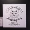 名古屋 今池に保護猫カフェ オープン