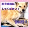 【緊急】期限1/27 動画あり!助けてください