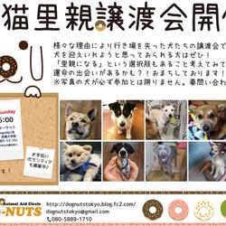 3月19日東京・青山にて譲渡会開催