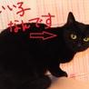 実は甘えた!美人黒猫ちゃん サムネイル5