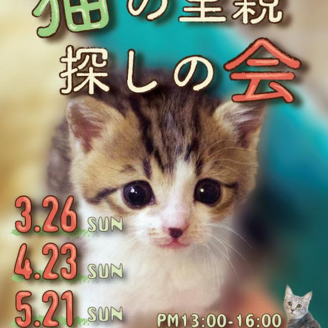 Cats'チャリティー播磨のカバー写真