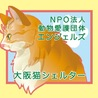 NPO法人 動物愛護団体エンジェルズ 猫の譲渡会