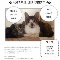 猫祭り&フリマ サムネイル2