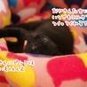 ミルク育ちの甘えん坊【優桜】 サムネイル3