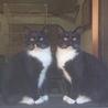 サリー(左)&マイケルです!