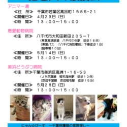 第24回 にゃん☆ぴーす犬猫譲渡会