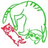 ねこ猫ネコの会(保護活動者)
