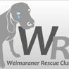 WRCワイマラナーレスキュ...(保護活動者)