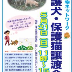 保護犬・保護猫譲渡会